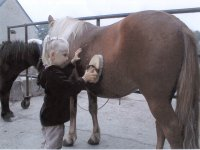 Decouverte enfant poney