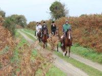 Sur les routes de campagne a cheval.JPG