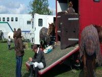 Sortie vers la competition equestre