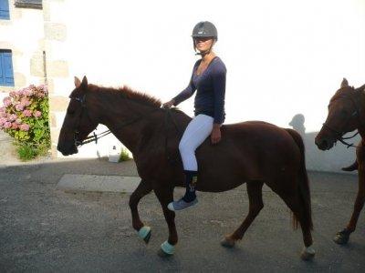 Centre Equestre l'Eperon