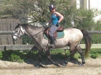 Equitation Quiberon