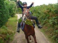 Humour equestre