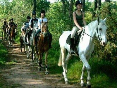 Trémelin Equitation