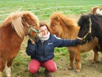 La directrice et les poneys