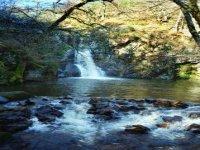 L Auvergne, une nature preservee