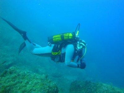 Amicale des Plongeurs Fresnois (APF)