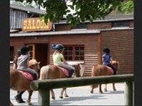 journee poney avec les enfants