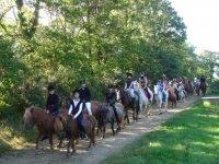 Randonnee equestre autour du Surzur