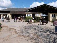 Le centre equestre de Bilaire