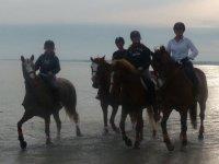 Sortie a cheval autour de Vannes