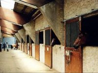 Equitation et randonnees Equestres dans la Vienne