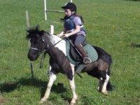 Equitation pour les enfants dans le 60