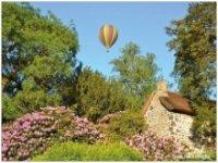 Ballon en pleine nature