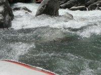 L eau bouillonante des Gorges