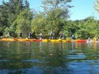 Canoe kayak sur le Gave d Oloron