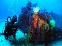 Exploration et plongée sous marine