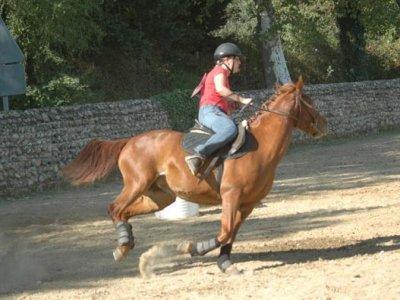 La Roche Noire Centre Equestre
