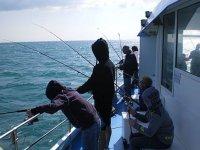 Louer un bateau pour partir pecher