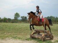 Saut d obstacles au Centre Equestre La Loubiere