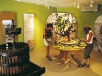 Visitez les différentes salles du musée