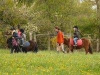 Balade avec les poneys et les enfants
