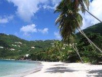 Naviguez vers les Tropiques