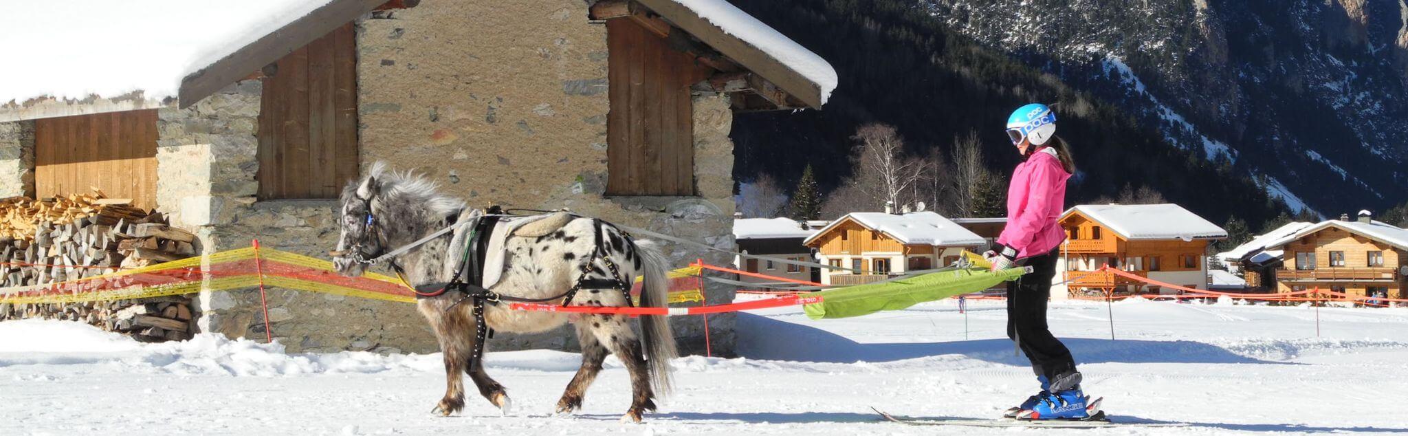 Ski Joëring dans France