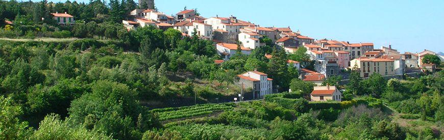 activités dans Pyrénées-Orientales