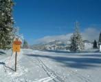 Ski de fond au coeur du Parc Natural r�gional du Haut-Jura