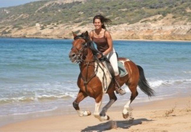 Plage et cheval