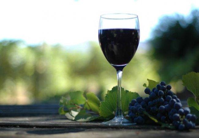Tourisme viticole en image