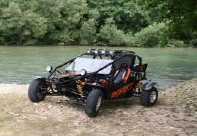 Buggy nature